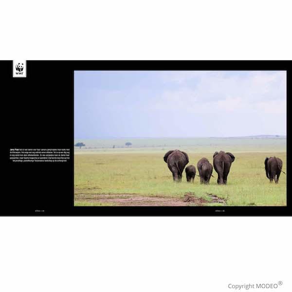 Publicaties in fotoboek Aarde op 1_Janny Polak